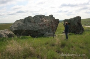 granite erratic, field stone