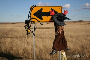 "This witch hit the road sign at the end of the driveway into the Davis Ranch in Slope County, October 23, 2009. She represents my own pondering as I tried to decide ""which way to turn"" as I constructed this website."